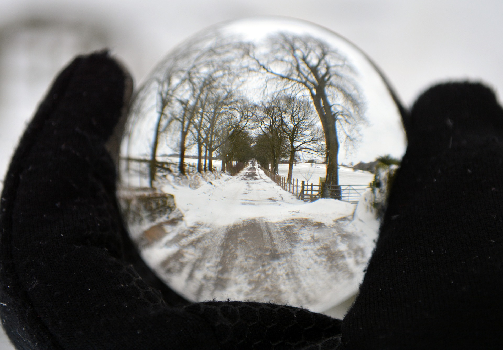 Using WithEvents to Encapsulate Event Handling Code