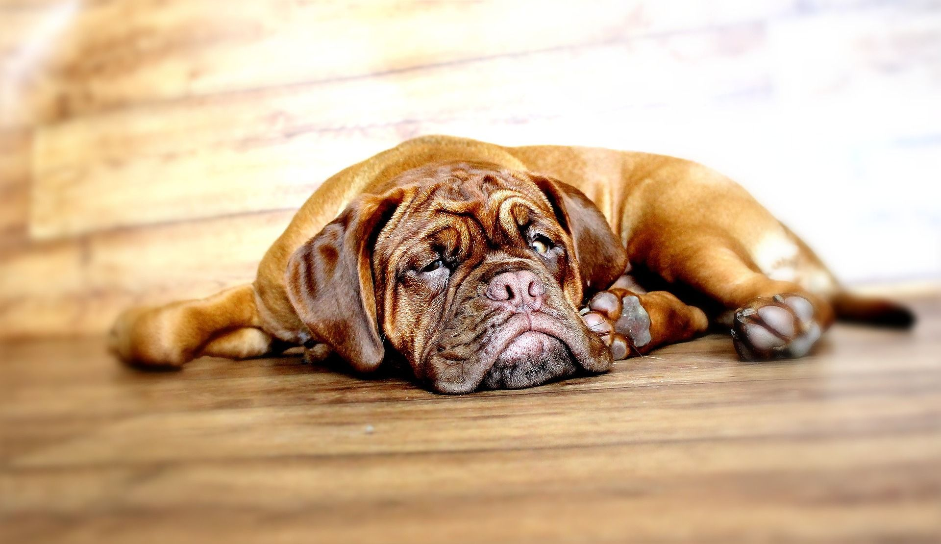 Why so lazy, Access?